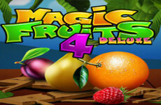 Magic Fruit 4